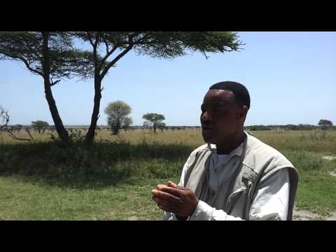 Funny Animals Sound African Safari Guide 2012