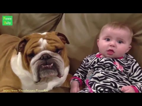 Funny Kids and animals Videos Compilation 2015 – Best Funny Baby Videos 2015