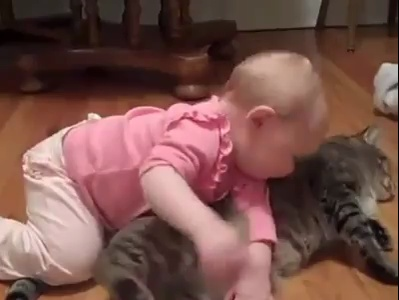 a baby play with cat Really very very funny and cute vedio