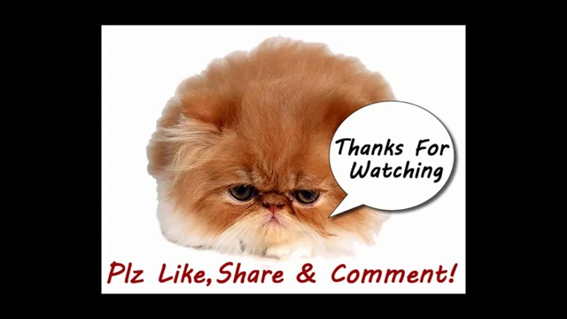 Funny Cats Video – Funny Cat Videos Ever- Funny Videos 2014 – Funny Animals Funny Animal Videos(2)