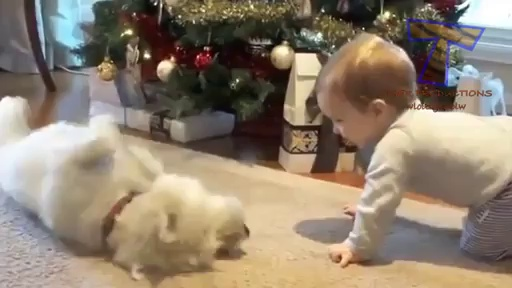Cute babies and dogs playing together – Funny baby & dog compilation – Video Dailymotion