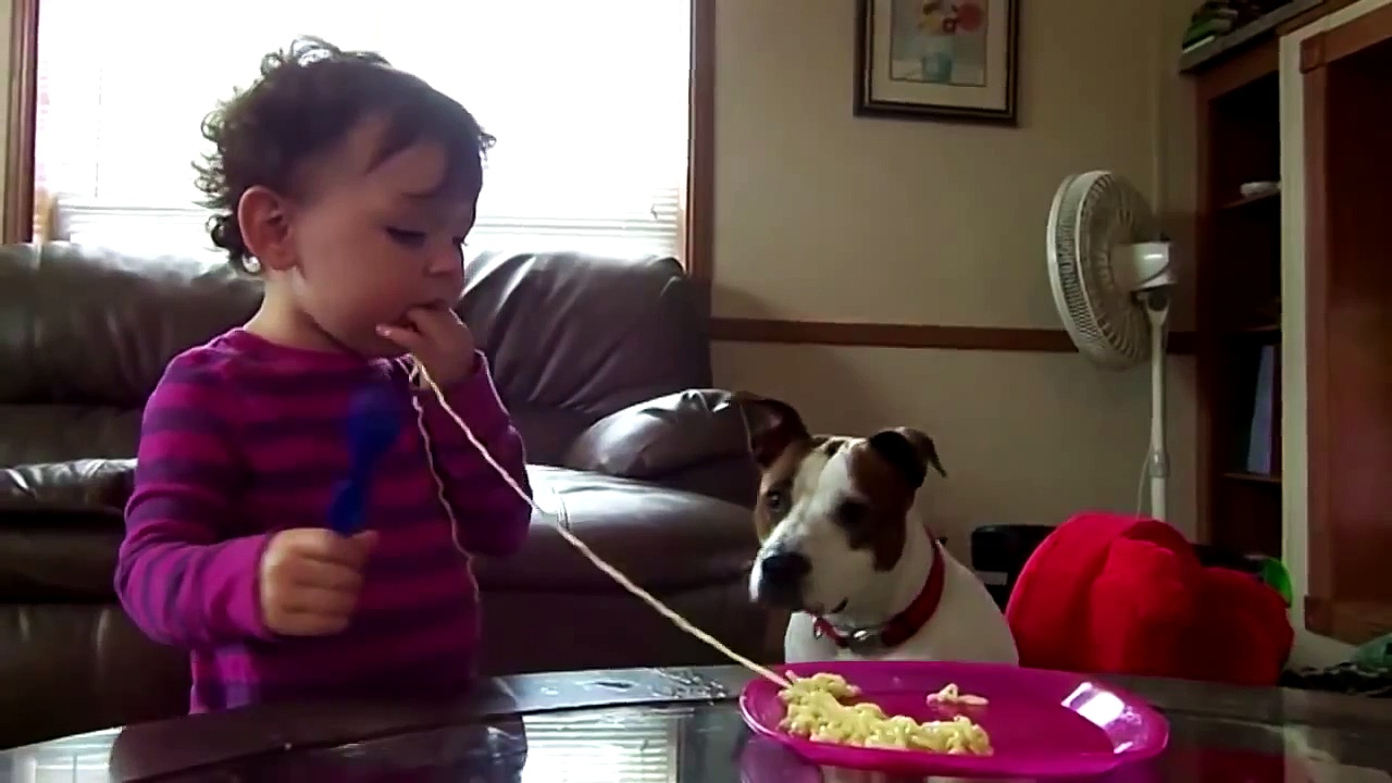 Cute Babies love Funny Dogs Compilation 2014 NEW HD latest funny video clip 2014-2015
