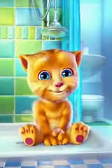 Talking Tom Cat Punjabi Billi Very Funny Video