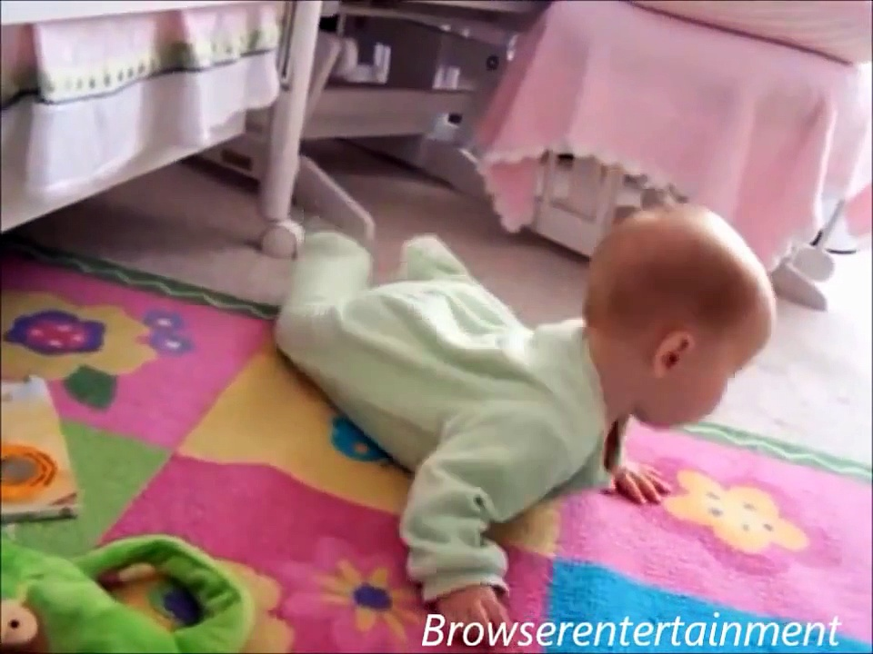 Videos : Baby and Dog Funny   Cute Dogs And Adorable Babies   Best Babies and Animals Compilation
